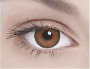 Адриа линзы контактные цветные медовый тон 3 /8,6/0,0D 2шт.