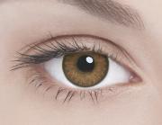 Адриа линзы контактные цветные орех тон 3 /8,6/0,0D 2шт.